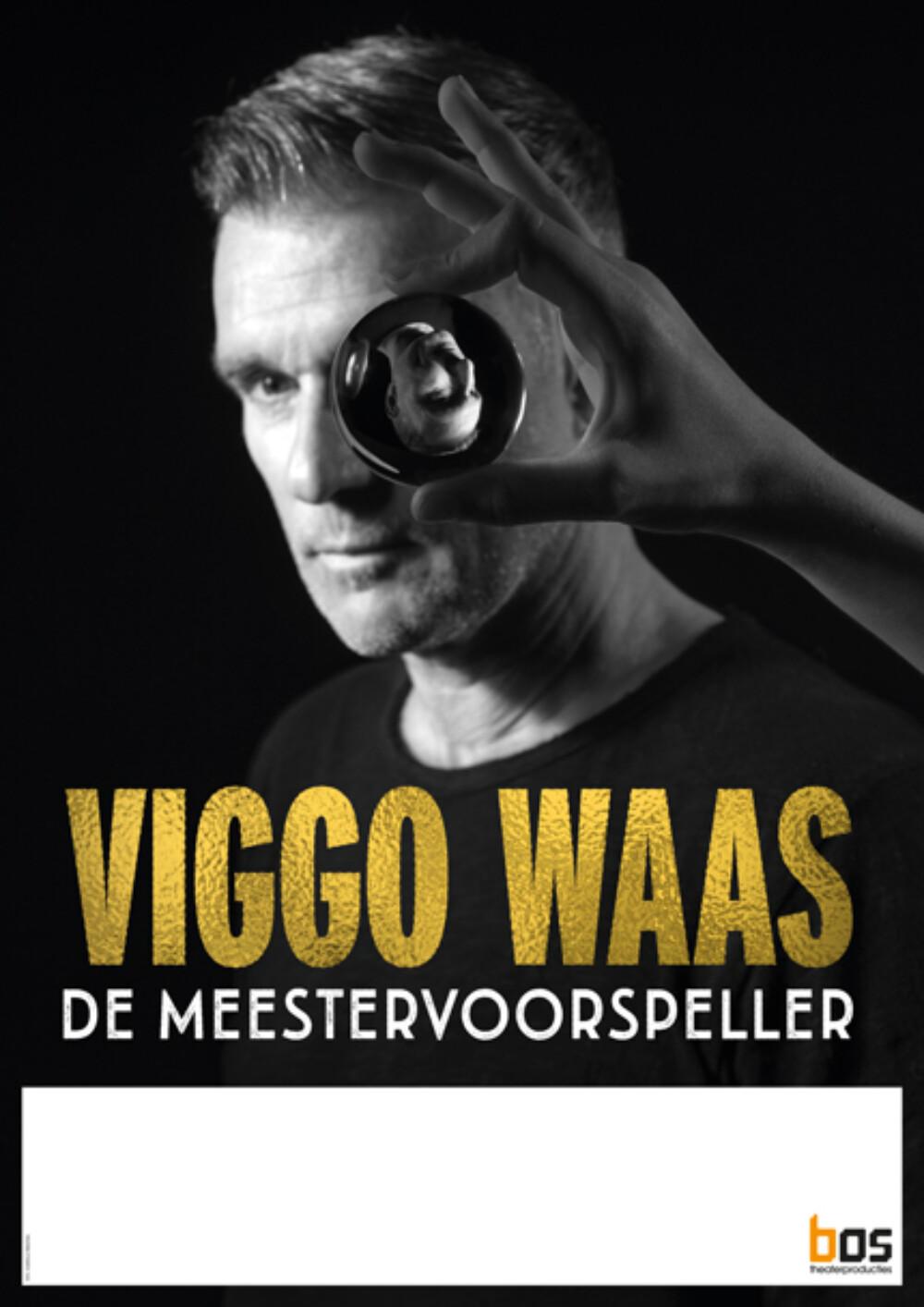 Viggo Waas - De Meestervoorspeller